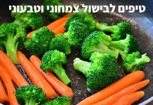 טיפים לבישול צמחוני וטבעוני